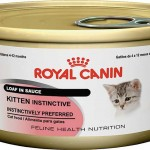 Royal Canin kitten canned