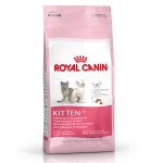 Royal Canin kitten dry