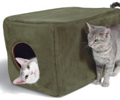 Cat play bed