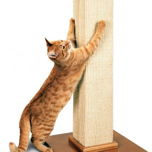 Ultimate scratch post