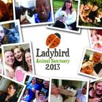 Ladybird2013_cover