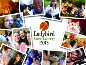 Ladybird2013_cover-300x225