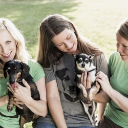 Ladybird Animal Sanctuary founders Melissa McClelland, Lisa Winn and Janine Stoll – Photo by Raina Kirn