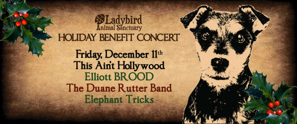 Holiday Benefit Concert with Elliott BROOD, Duane Rutter Band, Elephant Tricks