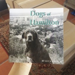 Dogs of Hamilton book