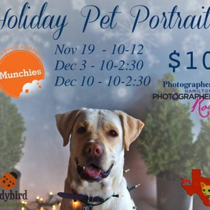 Holiday pet pics