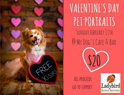 Valentines Pet Portraits