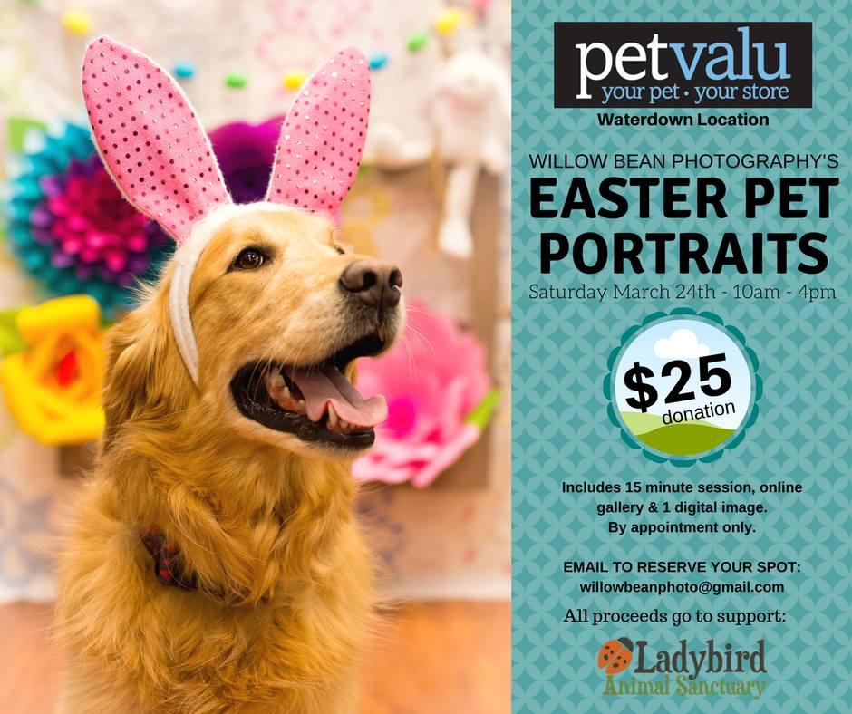 Easter Pet Portraits 2018